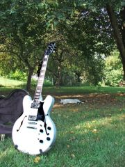 PSPIII White Guitar and my cat Romeow